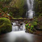 Nick Eaton Falls II by Tula Top