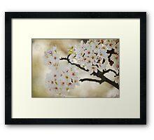 White Flowering Tree Framed Print