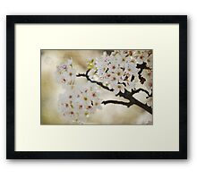 White Flowering Tree Framed Print