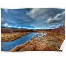 Washoe Wetlands 2 Poster