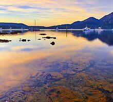 Golden Tranquility, Freycinet Tasmania by bevanimage