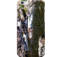River II [ iPad / iPod / iPhone Case ] iPhone Case/Skin