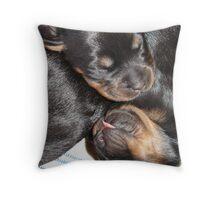 A Beautiful Dreamer In A Litter of  Rottweiler Puppies Throw Pillow