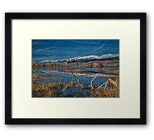 Farmers Pond Framed Print