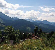 Koscielisko,Tatras scene by Tony Brown