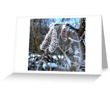 Frozen Catkins Greeting Card