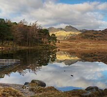 Blea Tarn-Fence End by VoluntaryRanger