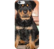 A Discontented and Wet Rottweiler Puppy  iPhone Case/Skin