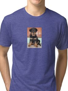 A Discontented and Wet Rottweiler Puppy  Tri-blend T-Shirt
