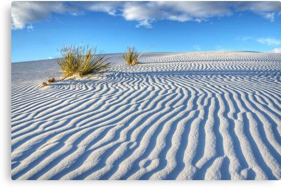 White Sands Blue Sky by Bob Christopher