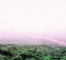Dartmoor in the mist by maratshdey
