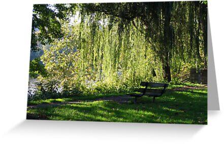 Peaceful by Linda Fields