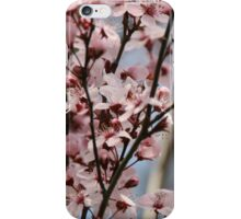 Pink Branches iPhone Case/Skin