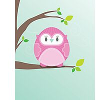 Sweet owl in a tree 4 Photographic Print