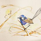 Blue fairywren on watercolour grained paper by TwoShoes