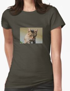 Tabby Cat Looking Down From A Height Womens Fitted T-Shirt