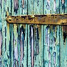 Rusty Hinge by Barbara Ingersoll