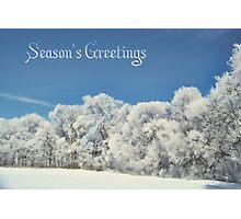 Season's Greetings Photographic Print