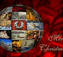 Merry Christmas Globe by Lois  Bryan