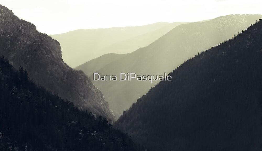 Interleaving Giants by Dana DiPasquale