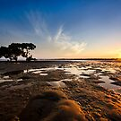 Mudflats Sunset by Kate Wall