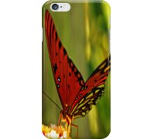 Butterfly iPhone Cover iPhone Case/Skin