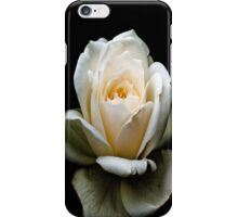 White Rose iPhone Cover iPhone Case/Skin