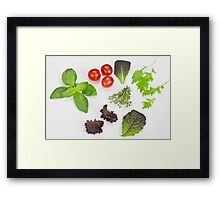 green Salad and spices and tomatoes Framed Print