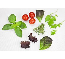 green Salad and spices and tomatoes Photographic Print