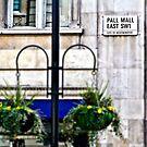 Pall Mall by Ann Evans