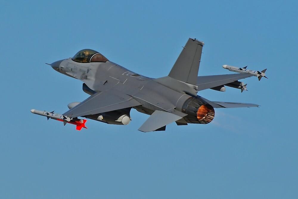 F16 fighter jet by Jose Saraiva