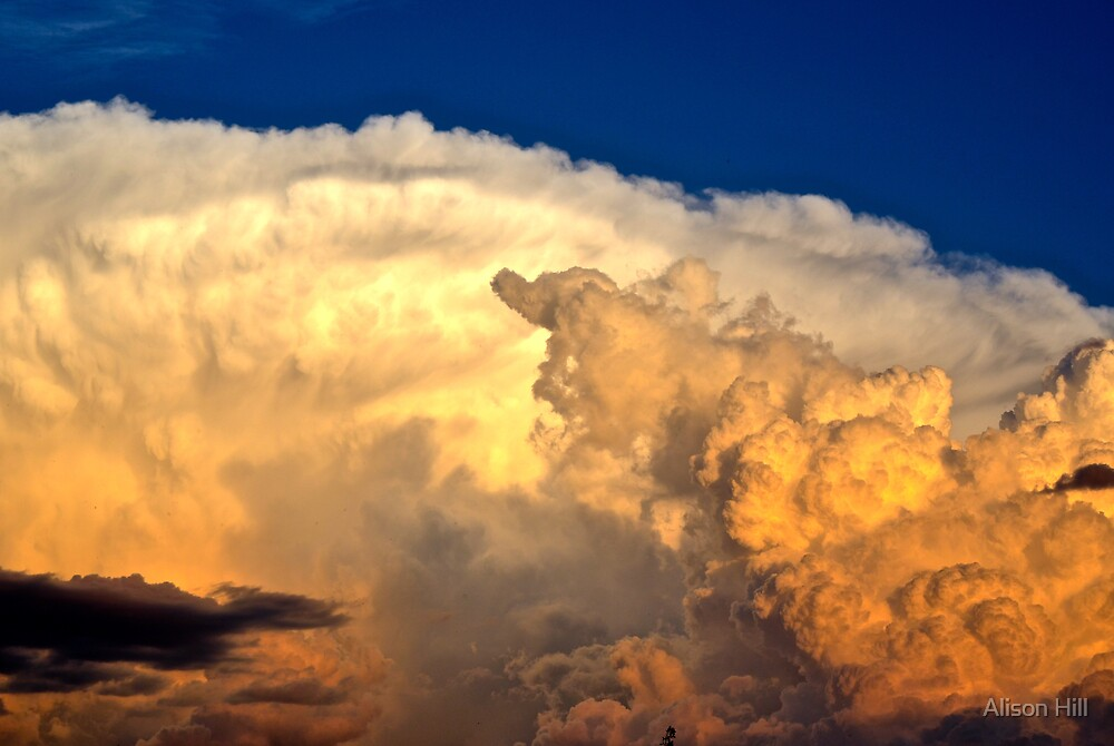 Summer Thunderstorm 2 by Alison Hill