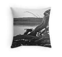 Northern Drift Wood Throw Pillow