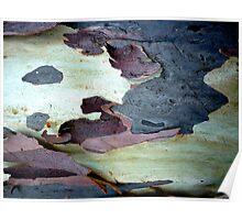 Bark Abstract # 10 Poster
