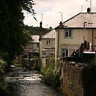 Village Stream by Seaxneat