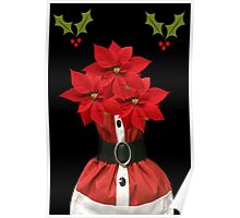 ❤‿❤ POINSETTIA CARD/PICTURE ❤‿❤ Poster