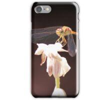 DragonFlower iPhone Case iPhone Case/Skin