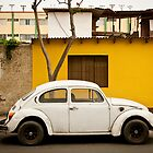 White Volkswagen Beetle in Peru by Sam Scholes