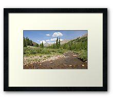 South Fork Williams Creek Framed Print