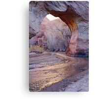 Coyote Natural Bridge Canvas Print