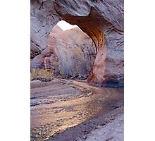 Coyote Natural Bridge Photographic Print