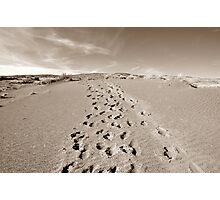 Forty Mile Ridge Photographic Print