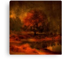 Reflections Under a Copper Sky Canvas Print