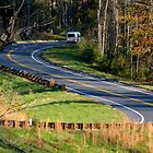 Life is a winding road thru which we must maneuver.....^ by ctheworld