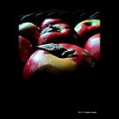 Malus Domestica - McIntosh Red Apples by © Sophie Smith