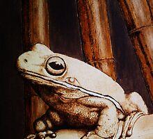 mr. frog by freddysmith
