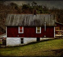 Little country house by vigor