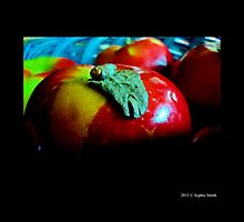 Malus Domestica - Red McIntosh Apple With A Leaf  by © Sophie W. Smith
