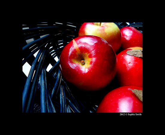 Malus Domestica - Red McIntosh Apples In Blue Wicker Basket by © Sophie W. Smith