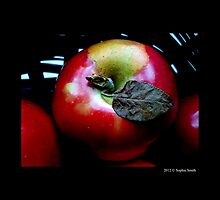 Red McIntosh Apple With A Dry Leaf  by © Sophie W. Smith